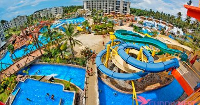 Specialized Pumps Make Water Parks Possible